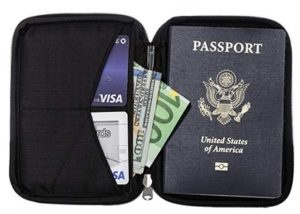 Zero Grid Single Passport Holder